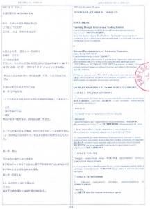 2011_zonda_bus_china